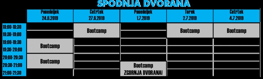 Urnik_dopust_2019_spodnja